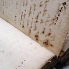 Wżery atramentów występujące na wielu kartach rękopisów.